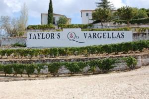 Taylors Vargellas